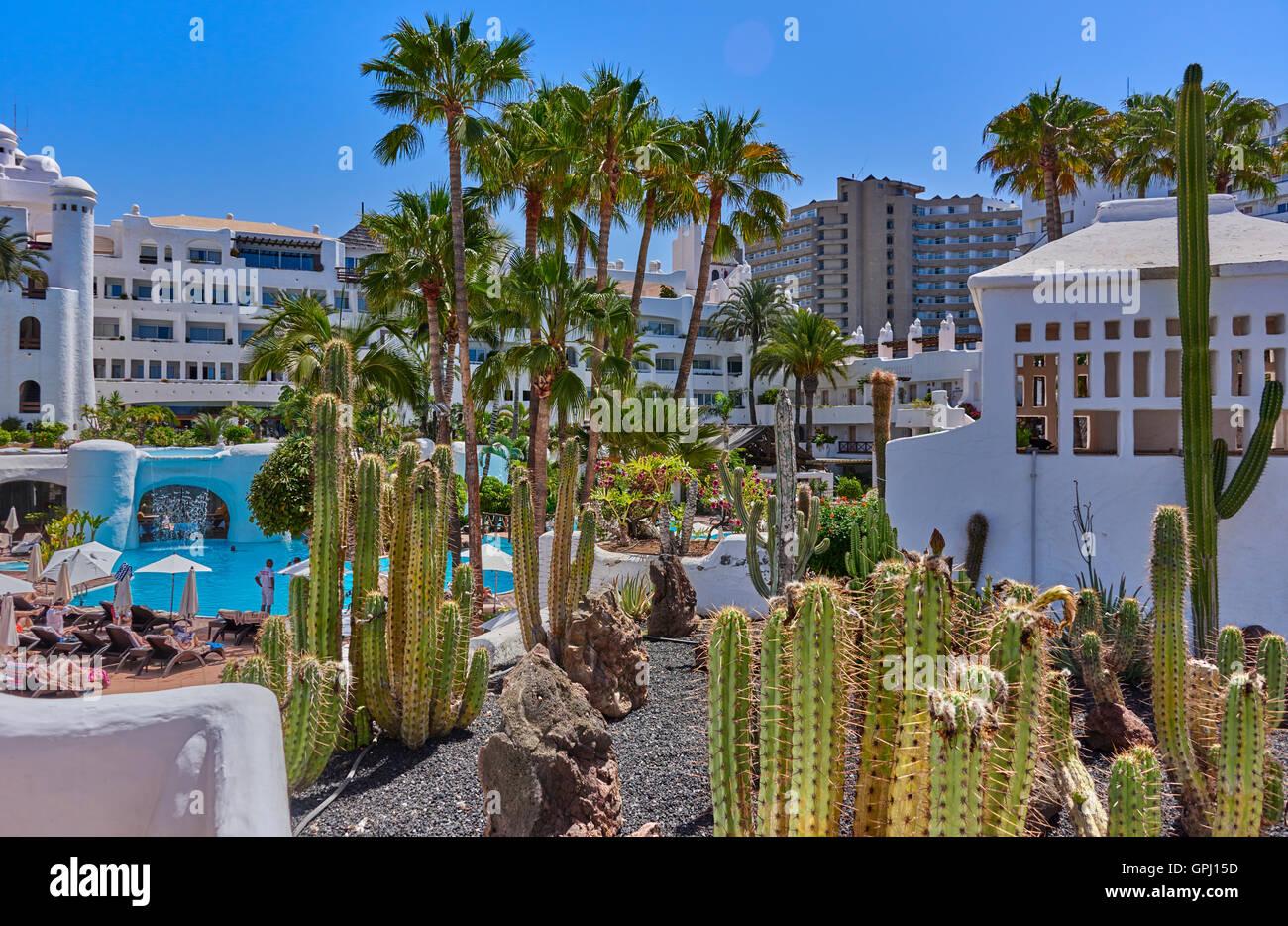 Hotel Jardin Tropical Costa Adeje Tenerife Stock Photo 117180713