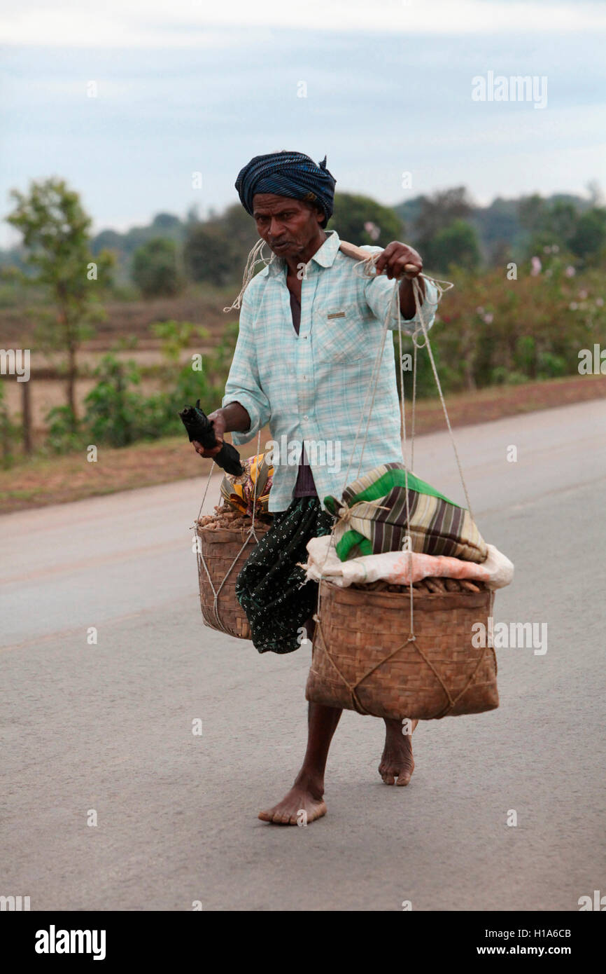 [Image: old-man-carrying-turmeric-chattisgarh-india-H1A6CB.jpg]