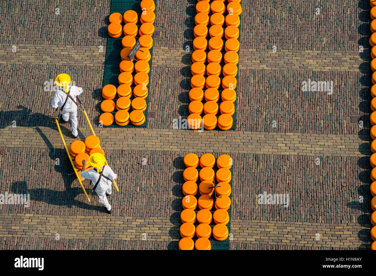 Carriers at Alkmaar cheese market, seen from above - Stock Image