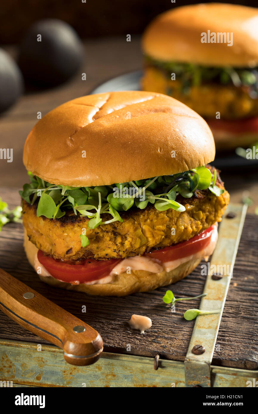Homemade Pumpkin and Bean Burger with Lettuce and Tomato - Stock Image