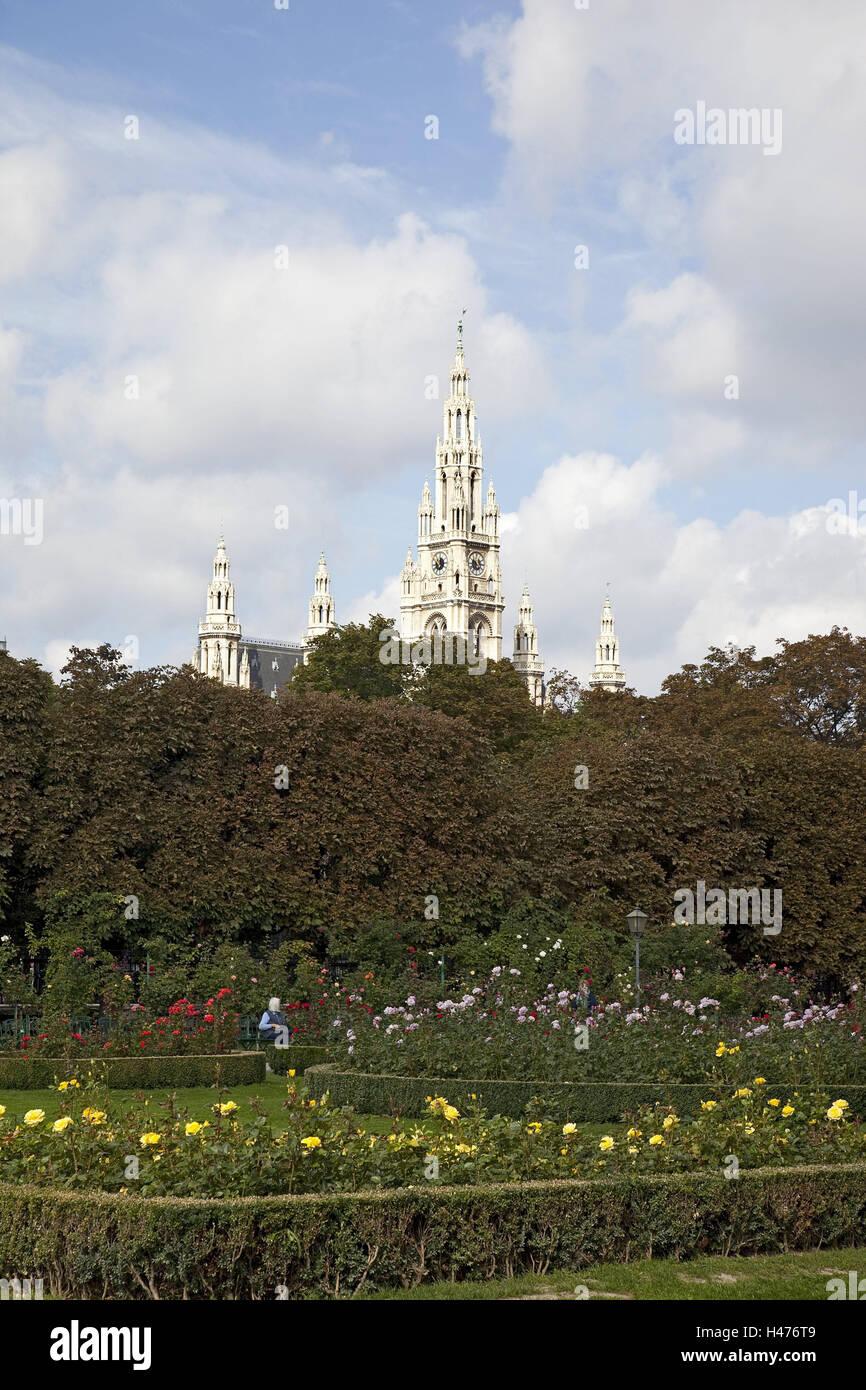 Austria, Vienna, park, flowers, city hall, garden, summer, outdoors ...