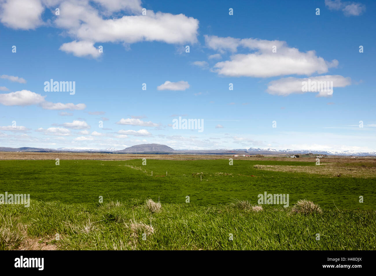 open farmland in lush fertile southern Iceland - Stock Image