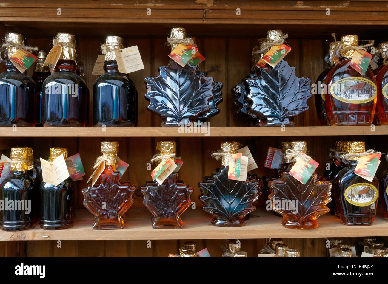 bottles-of-canadian-maple-syrup-lined-up