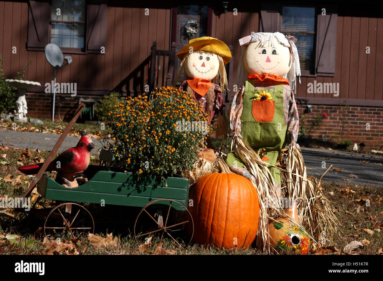 Outdoor Fall Decoration With Scarecrow And Pumpkins Stock Photo