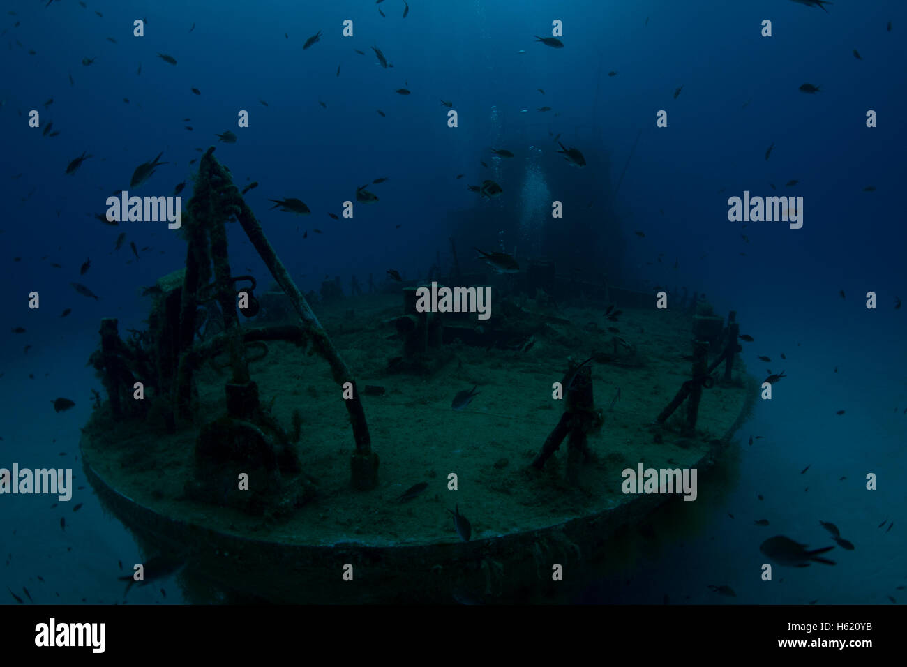 P31 wreck at Comino, Malta, Mediterranean sea. An old patrol boat sunken to be a dive attraction. - Stock Image