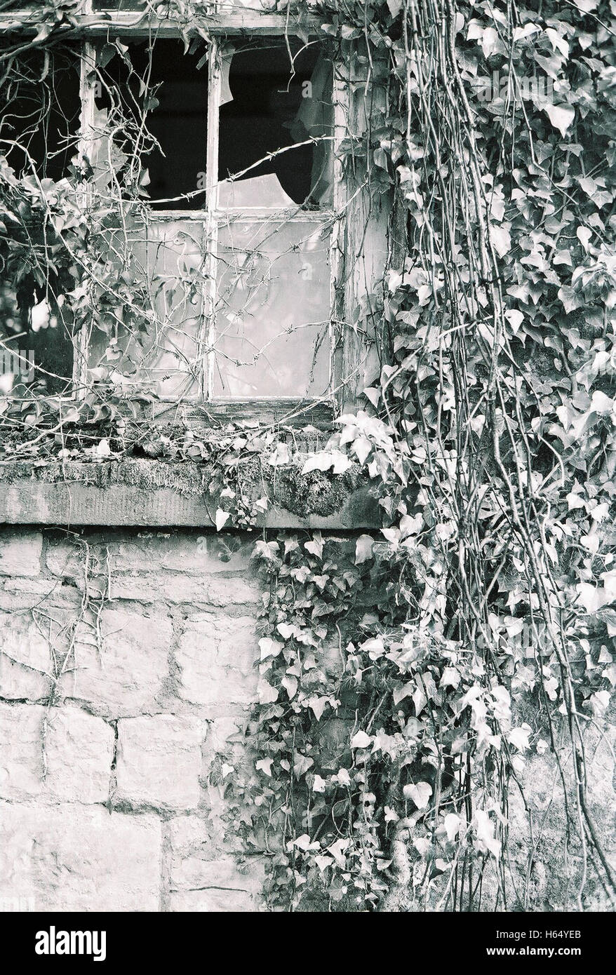 Abandoned chapel in Wales UK overgrown and left derelict photographed with Kodak BW400 black and white film Stock Photo