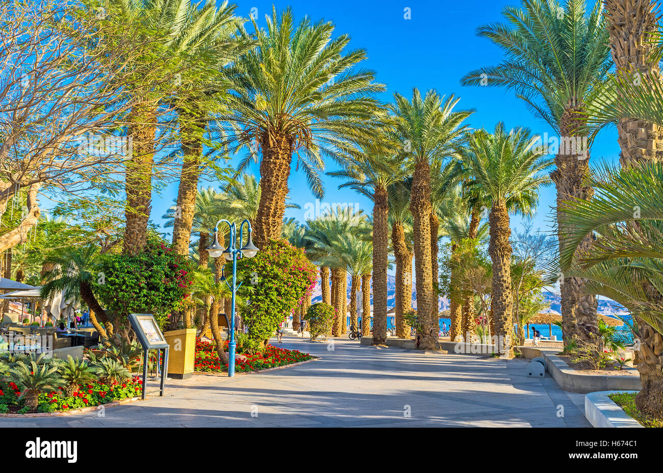 Palm Beach Gardens Stock Photos & Palm Beach Gardens Stock Images ...
