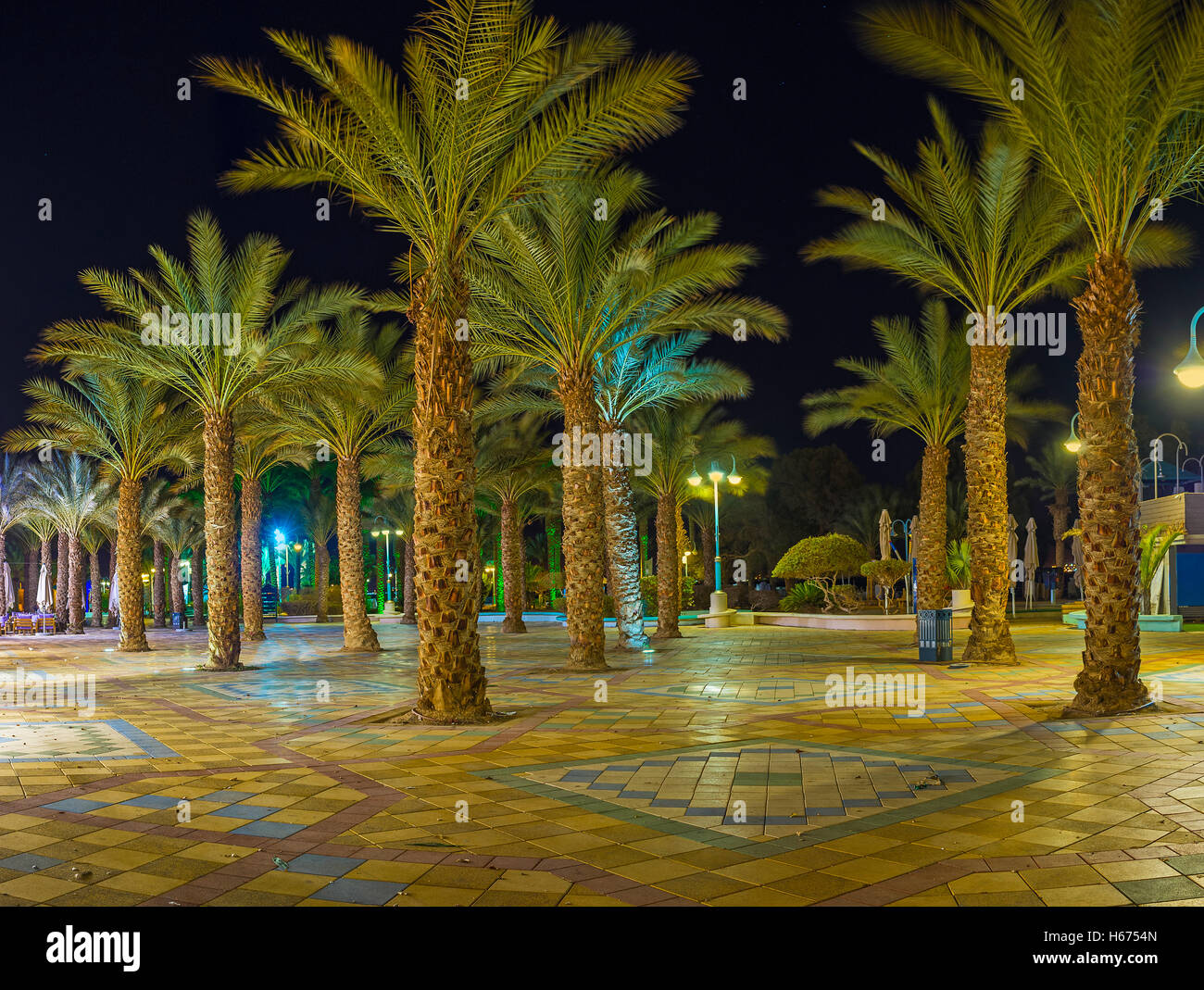 The night palm garden in central promenade of Eilat, Israel Stock ...