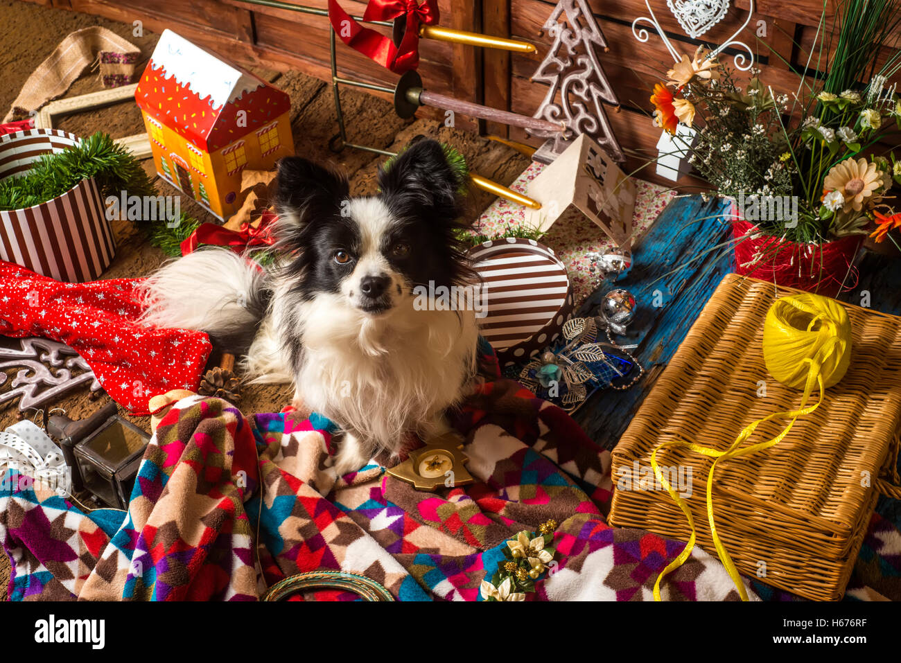 Little dog Christmas card, puppy and colorful Christmas decorations ...
