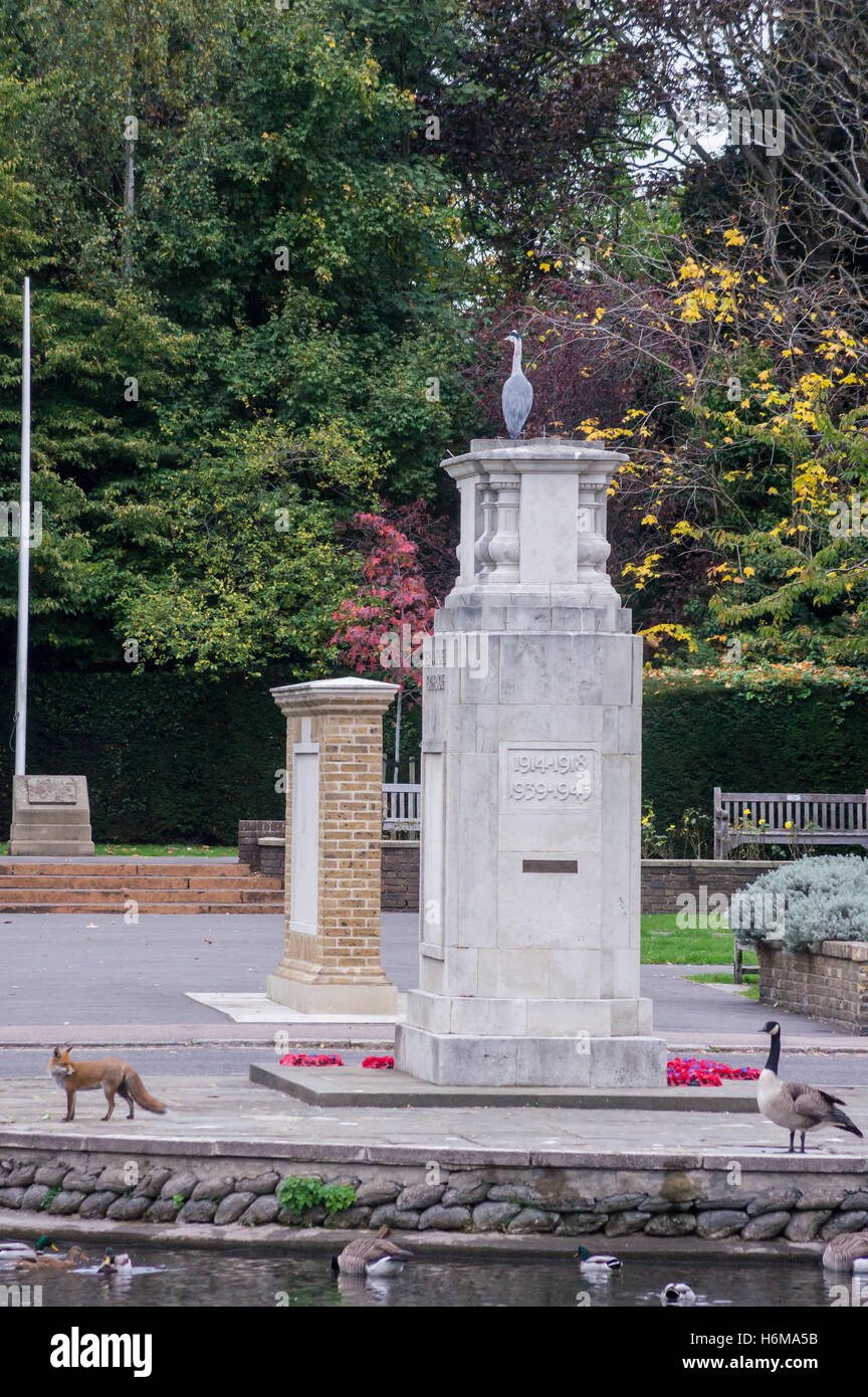 a-grey-heron-on-top-of-carshalton-war-memorial-by-eh-bouchier-1921-H6MA5B.jpg