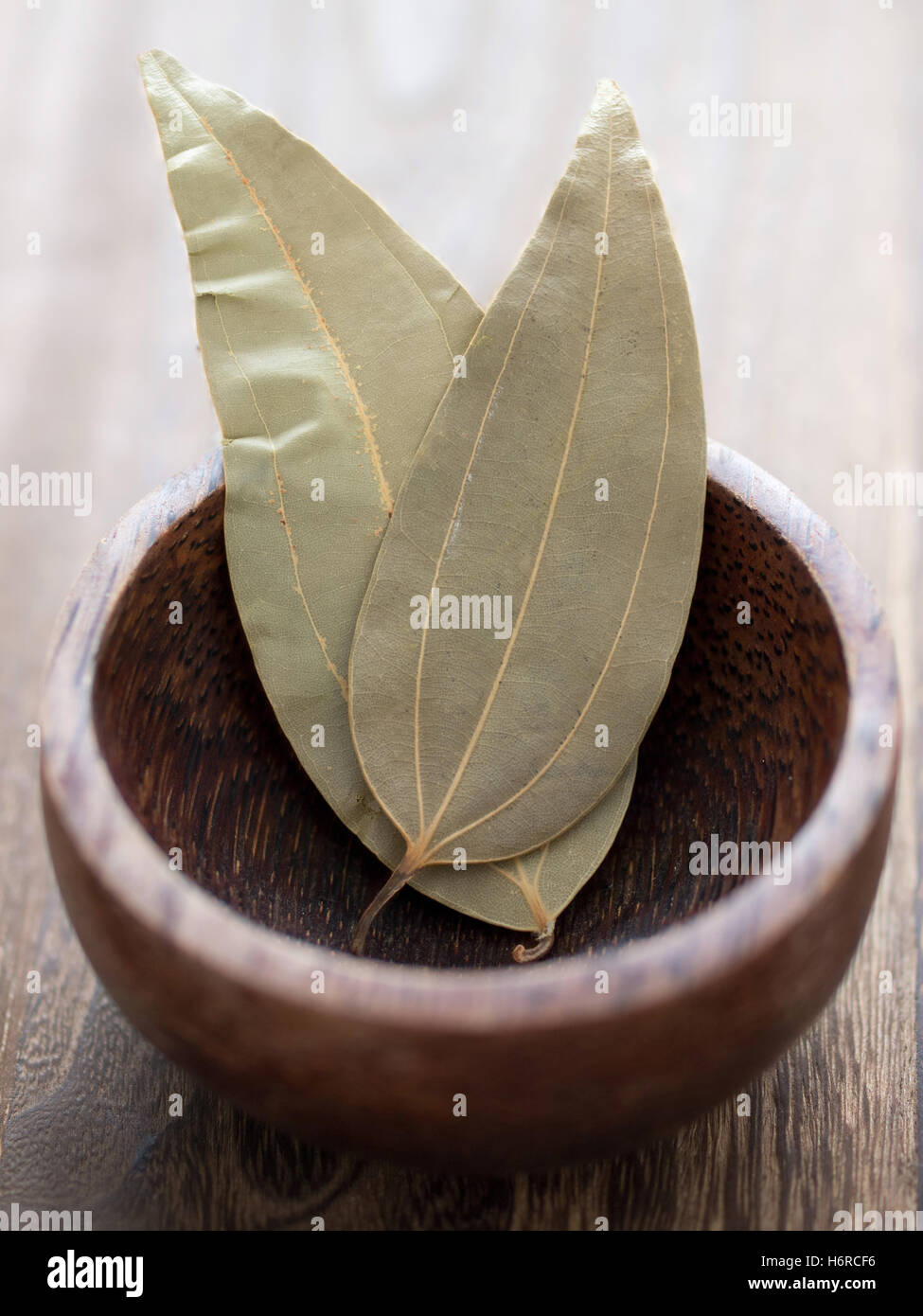 leaves aromatic bay dried spices herb ingredient indian foliage leaf spice colour closeup leaves aromatic boil cooks - Stock Image
