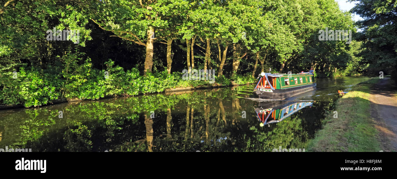 country,countryside,travel,tourism,tourist,walk,walking,cycle,track,trees,leisure.beautiful,still,reflections,Cheshire,England,UK,path,tow,towpath,NW,north,west,Halton,wide,pano,panorama,sailing,boathire,boat,hire,leisure,holiday,holidays,green,Cycle Track,Narrowboat Hire,GoTonySmith,@HotpixUK,Tony,Smith,UK,GB,Great,Britain,United,Kingdom,English,British,England,problem,with,problem with,issue with,Buy Pictures of,Buy Images Of,Images of,Stock Images,Tony Smith,United Kingdom,Great Britain,British Isles,Runcorn Canal,Runcorn Bridgewater Canal,Bridgewater Canal Halton
