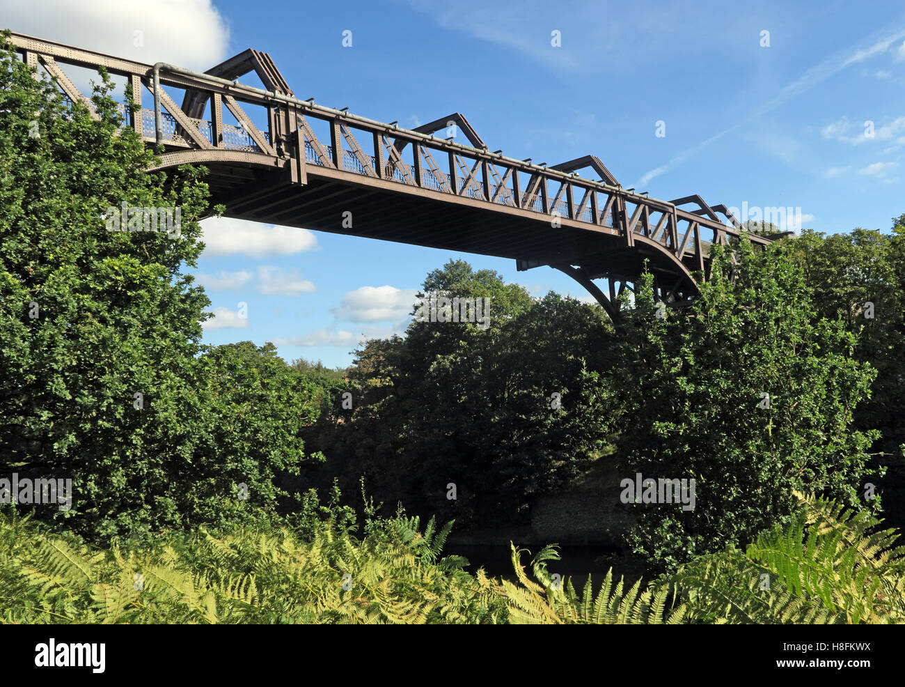 High,level,summer,spring,metal,steel,iron,frame,framework,Ackers,ln,lane,rd,road,park,MSCC,repairs,maintenance,TPT,trans,pennine,trail,High level Bridge,Ackers Road,Ackers Rd,Cantilever Park,Cantilever Bridge,Cantilever Bridges,Manchester Ship Canal,Peel Ports,Trans Pennine Trail,GoTonySmith,@HotpixUK,Tony,Smith,UK,GB,Great,Britain,United,Kingdom,English,British,England,cycle,route,tree,trees,path,foliage,ferns,wide,across,Buy Pictures of,Buy Images Of,Images of,Stock Images,Tony Smith,United Kingdom,Great Britain,British Isles,Buy photo of,Transpennine Trail,Trans-pennine Trail