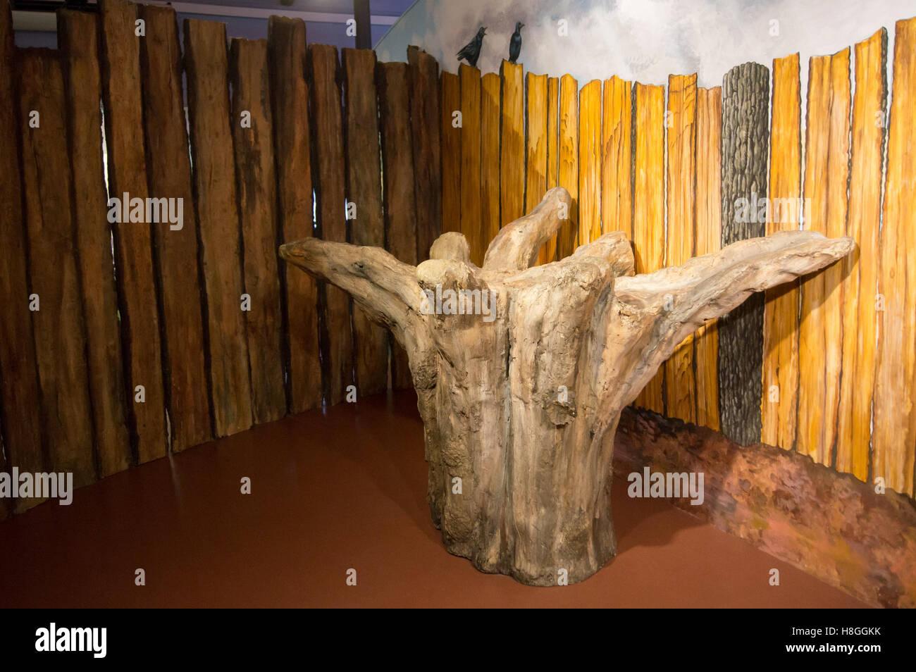 cast-replica-of-seahenge-prehistoric-tree-stump-kings-lynn-museum-H8GGKK.jpg