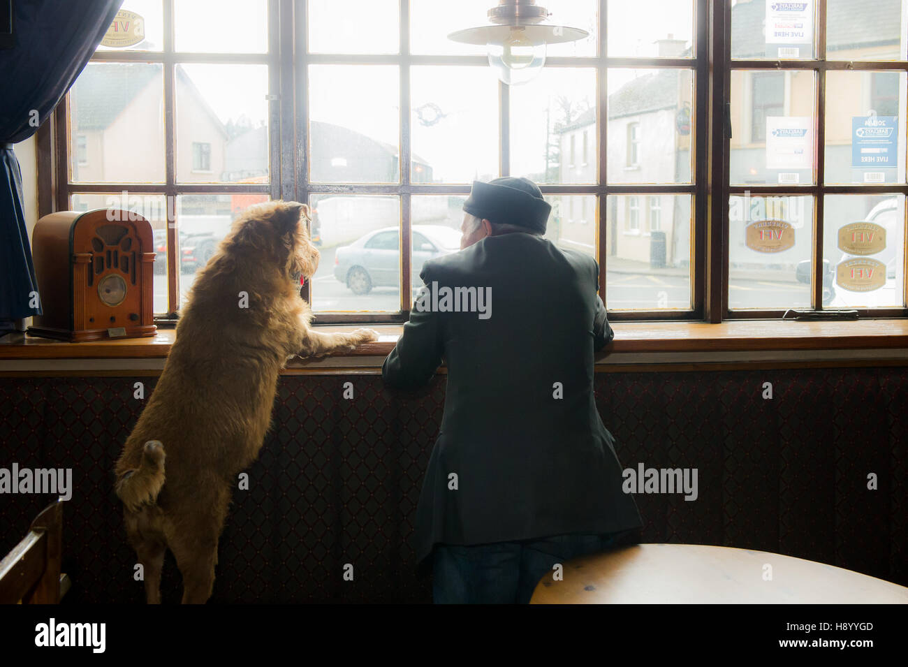 old-man-and-his-dog-looking-out-of-the-window-of-a-pub-in-coachford-H8YYGD.jpg