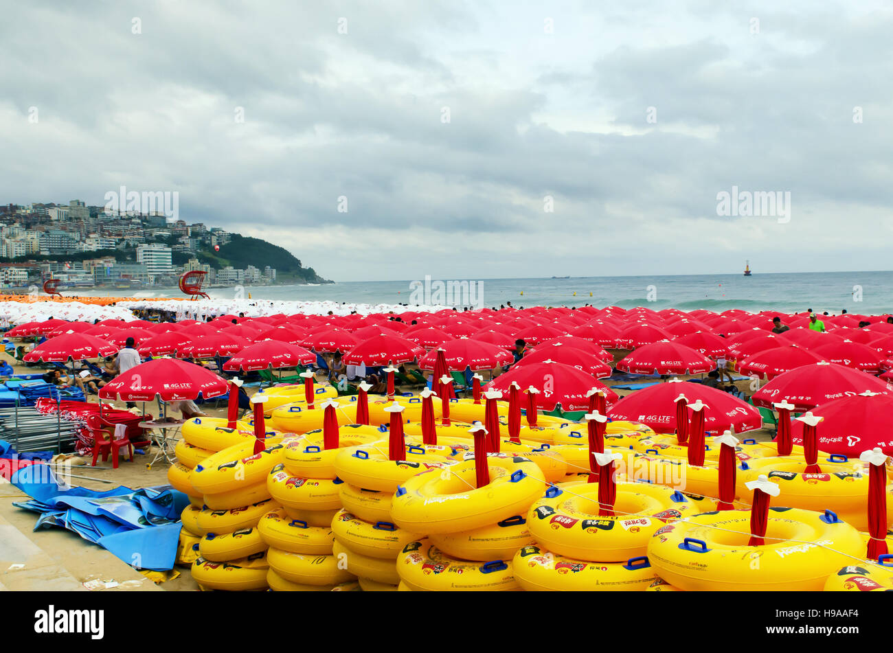 Busan, South Korea - 6 August 2011:  Haueundae beach full of umbrellas during it's peak season as a storm rolls - Stock Image