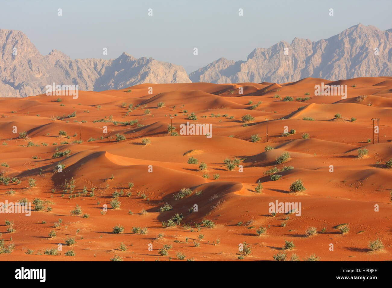 red-sand-dunes-abu-dhabi-emirate-united-arab-emirates-the-mountains-H9DJEE.jpg