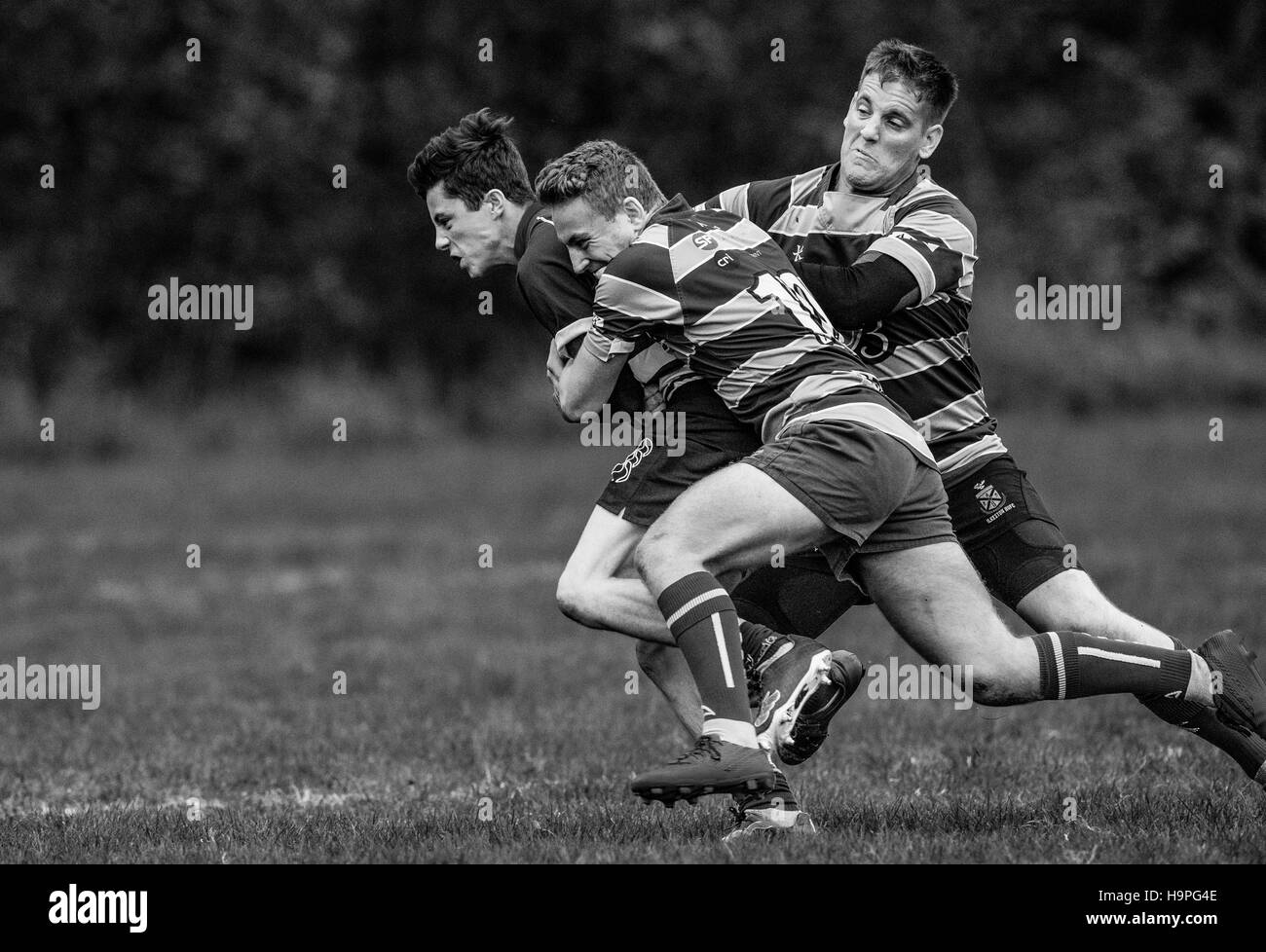 Male rugby union football player being tackled Stock Photo