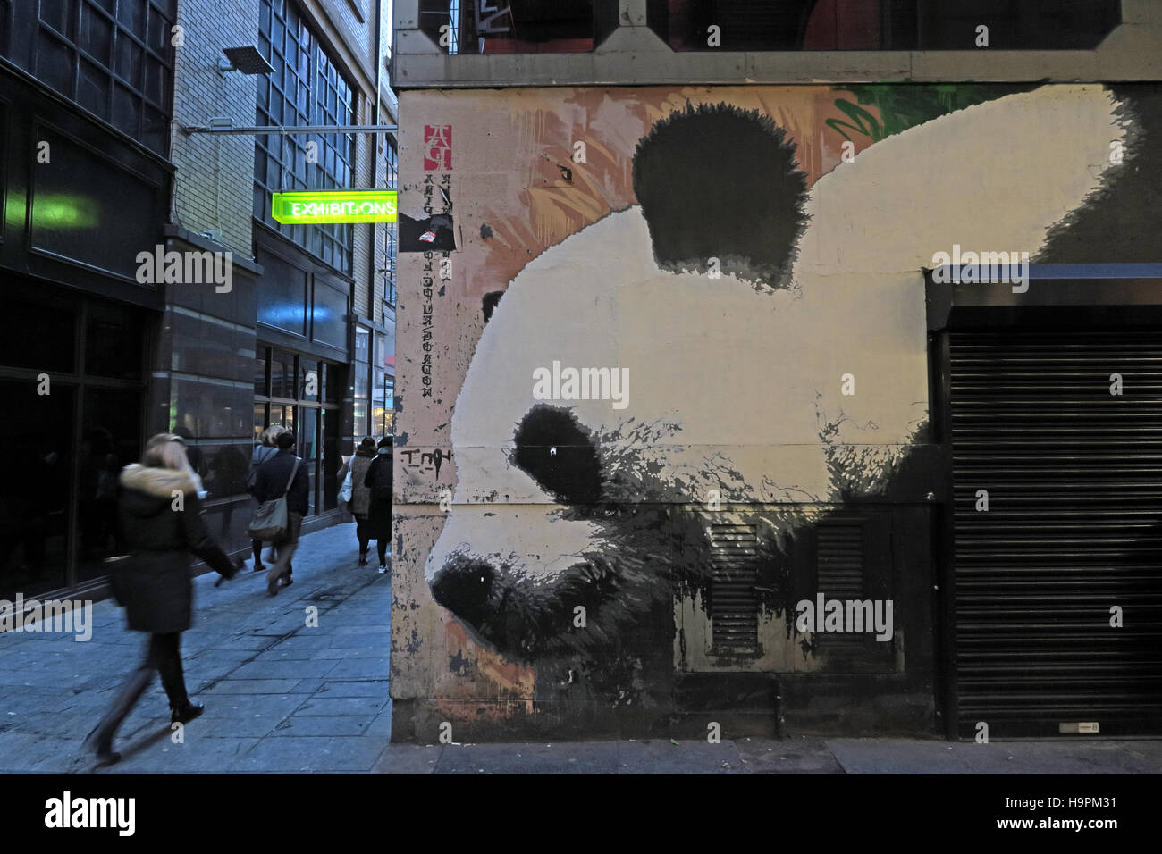 art,artist,spray,template,animal,street,st,streets,ln,Glasgow,Scotland,UK,city,centre,people,persons,person,Lighthouse,Panda graffiti,Mitchell Lane,city centre,The Lighthouse,GoTonySmith,@HotpixUK,Tony,Smith,UK,GB,Great,Britain,United,Kingdom,English,British,England,Buy Pictures of,Buy Images Of,Images of,Stock Images,Tony Smith,United Kingdom,Great Britain,British Isles