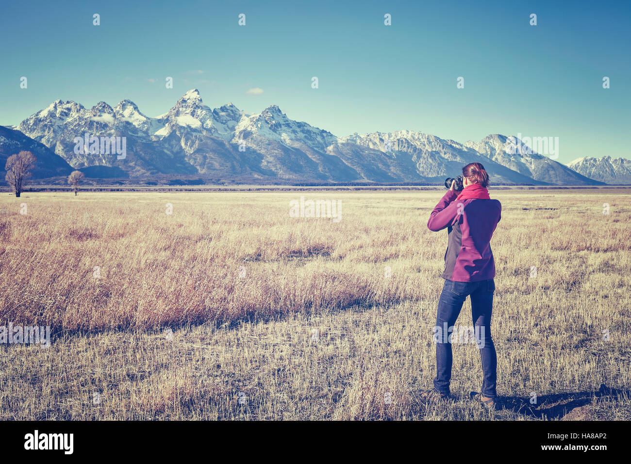 Vintage toned female fit hiker taking pictures with DSLR camera in the Grand Teton National Park, Wyoming, USA. - Stock Image