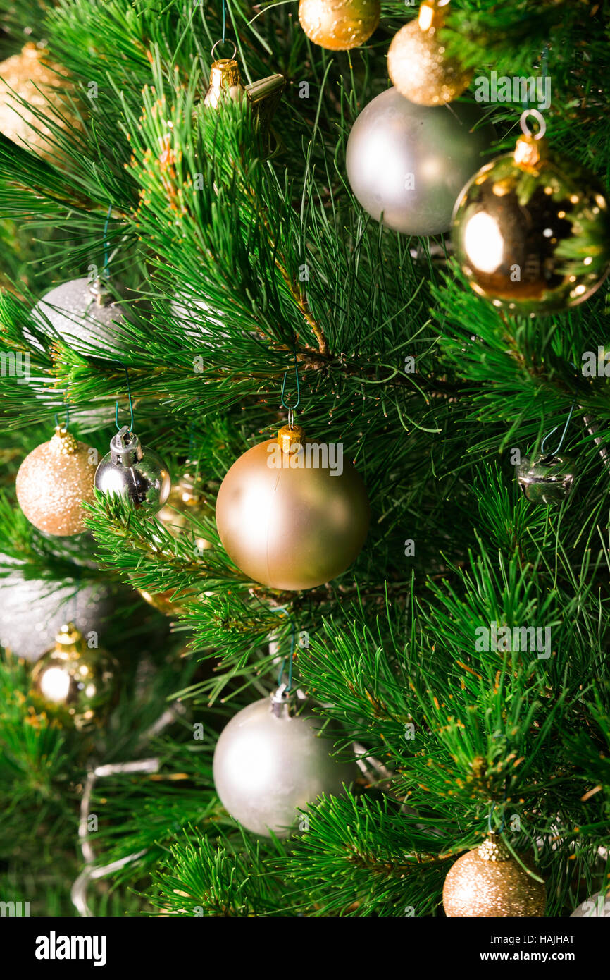 Real Christmas Tree Stock Photos & Real Christmas Tree Stock Images ...