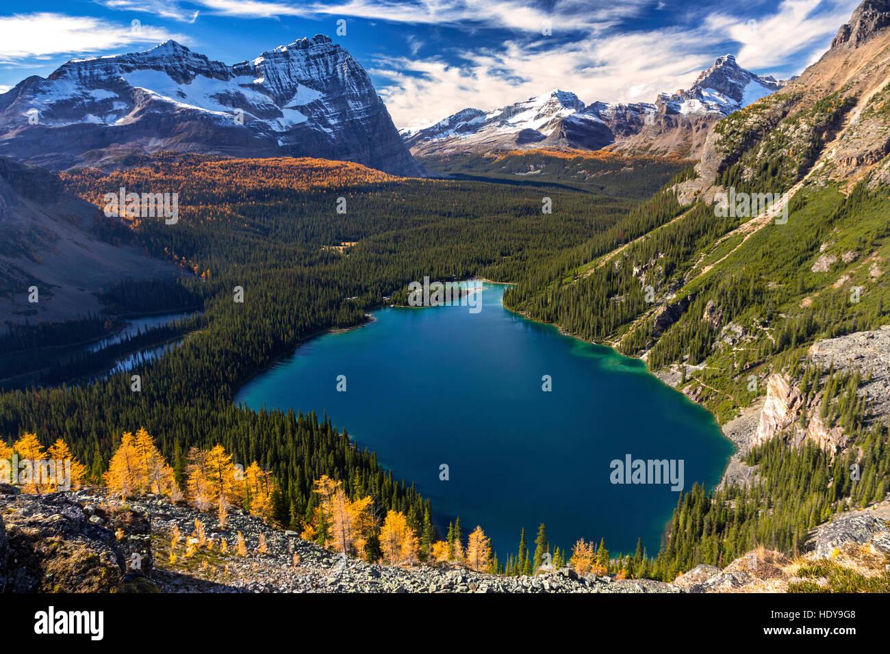 lake-ohara-basin-and-snowy-mountain-tops