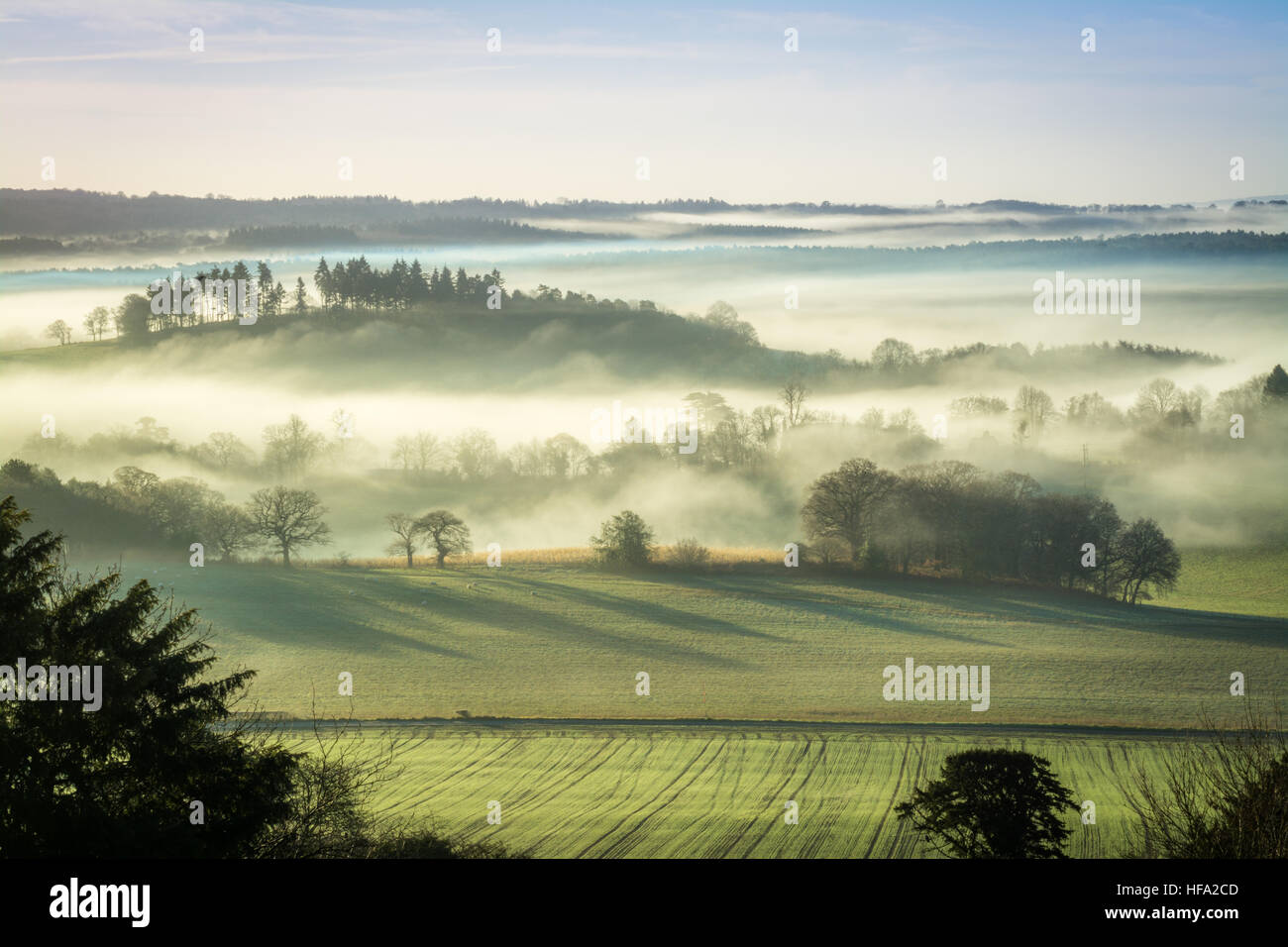 newlands-corner-in-the-surrey-hills-aonb-uk-an-early-morning-misty-HFA2CD.jpg