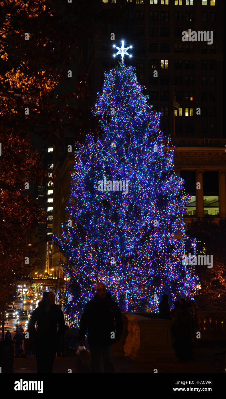 Christmas Lights 2020 San Diego Darling Harbour Christmas Tree Lighting 2020 San Diego | Xdkmvf