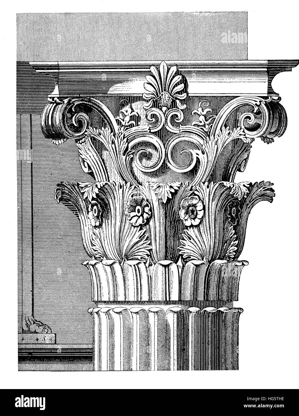 Architectural detail, elaborated Corinthian capital with acanthus leaves and scrolls,vintage engraving. Corinthian - Stock Image