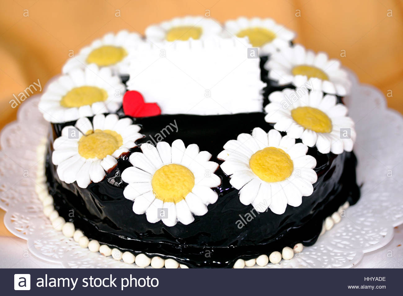 Dark Chocolate Ganache Cake White Daisy Flower With Yellow Center
