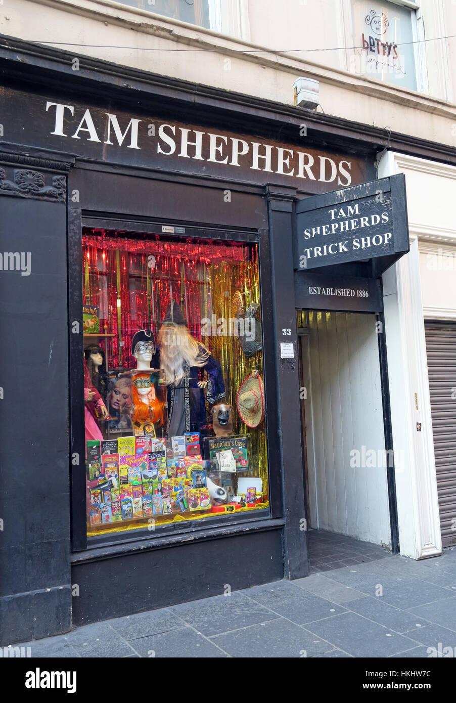 Tam shepherds,joke,shop,gotonysmith,highstreet,frivolity,Scotland,Scottish,scots,Original