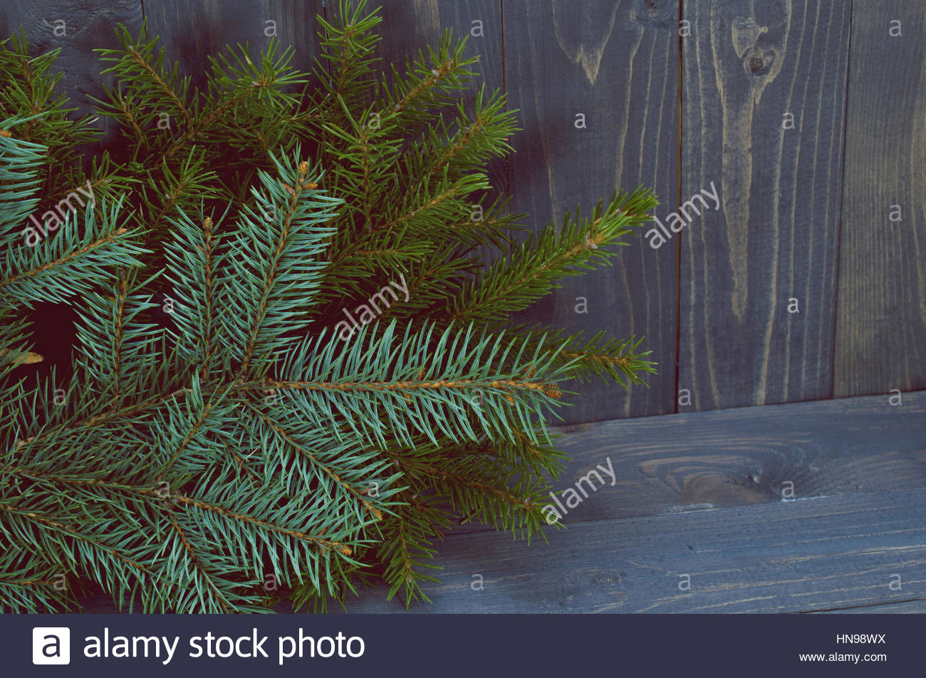 Pine Branches On Dark Wood Background - Stock Image