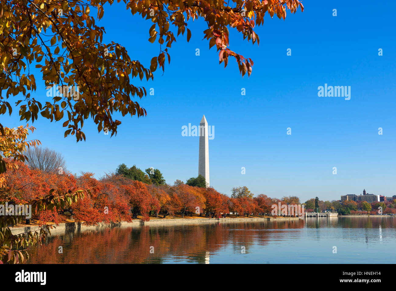 The Washington Monument from the Tidal Basin in the fall, West Potomac Park, Washington DC, USA Stock Photo