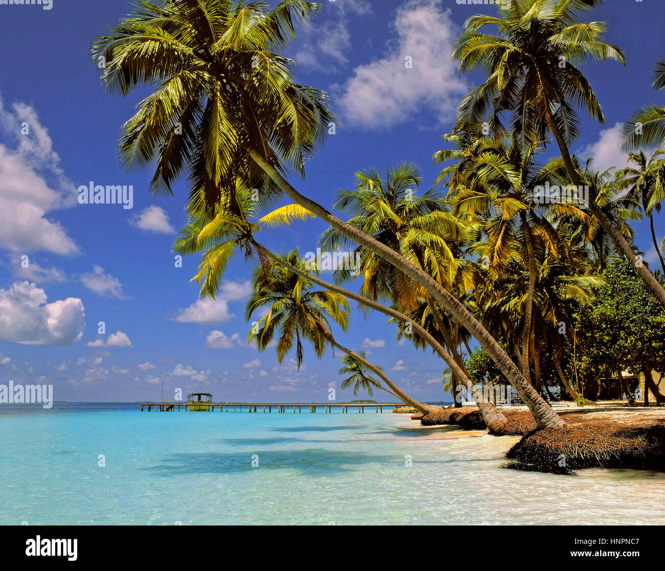 Kuda Bandos Island, North Male Atoll, Maldives, Maldive Republic, Indian Ocean Atoll - Stock Image
