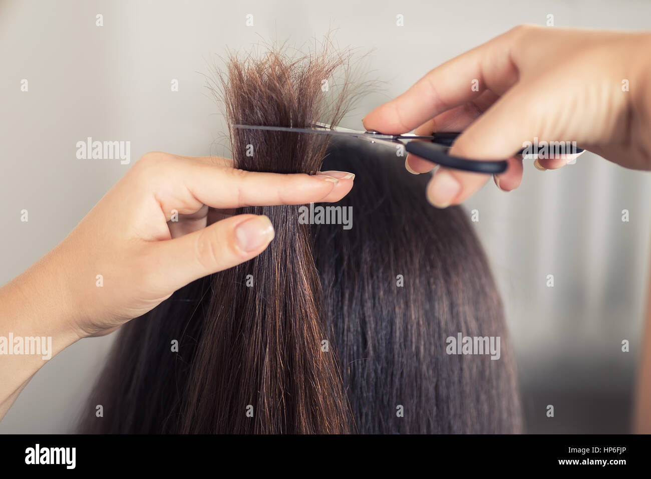 Hairdresser Trimming Brown Hair With Scissors Hairdresser Do