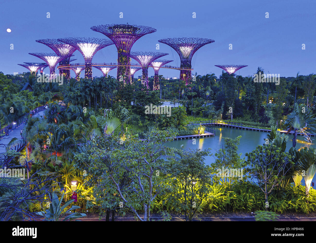 Singapur, Botanischer Garten - Stock Image