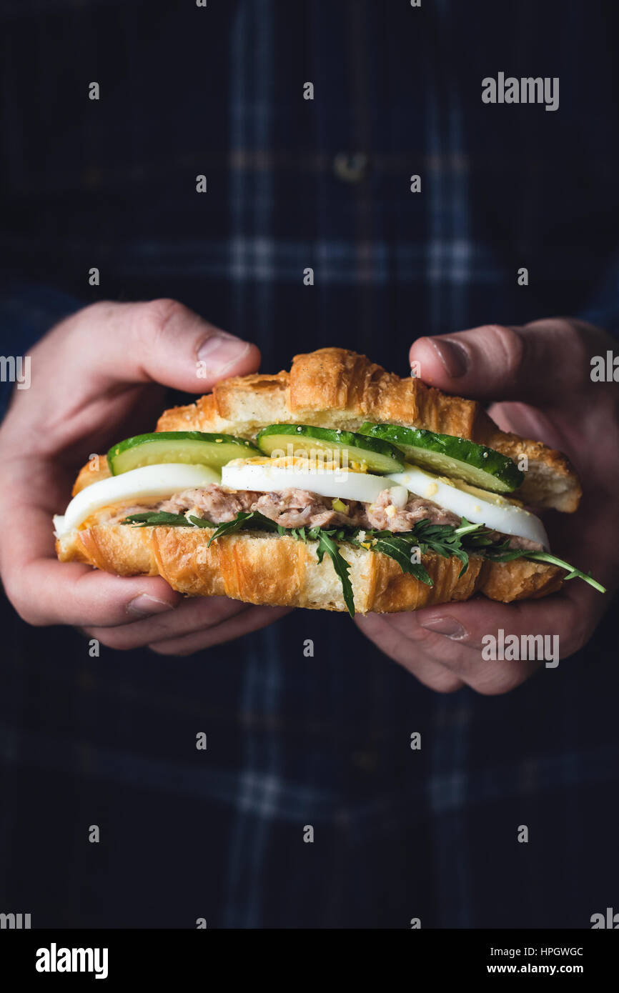 Hands holding tuna croissant sandwich with arugula, egg, tuna salad and cucumber. Closeup view, toned image - Stock Image