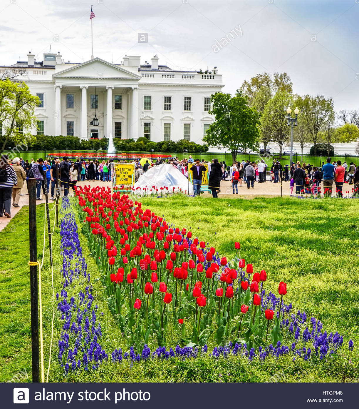 White house flowers manly gallery flower decoration ideas white house flowers manly image collections flower decoration ideas white house flowers manly image collections flower mightylinksfo