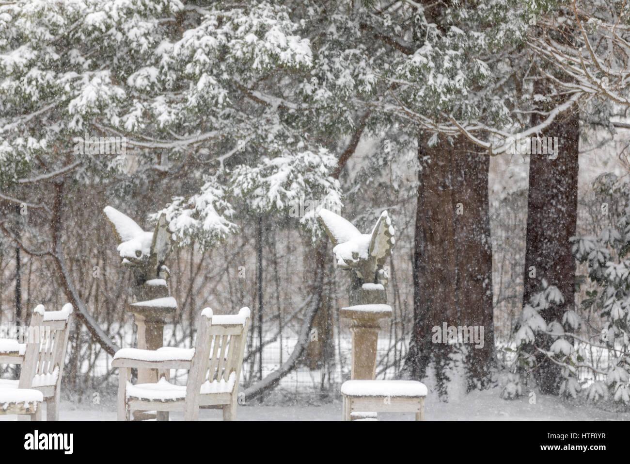 gargoyles in the snow - Stock Image