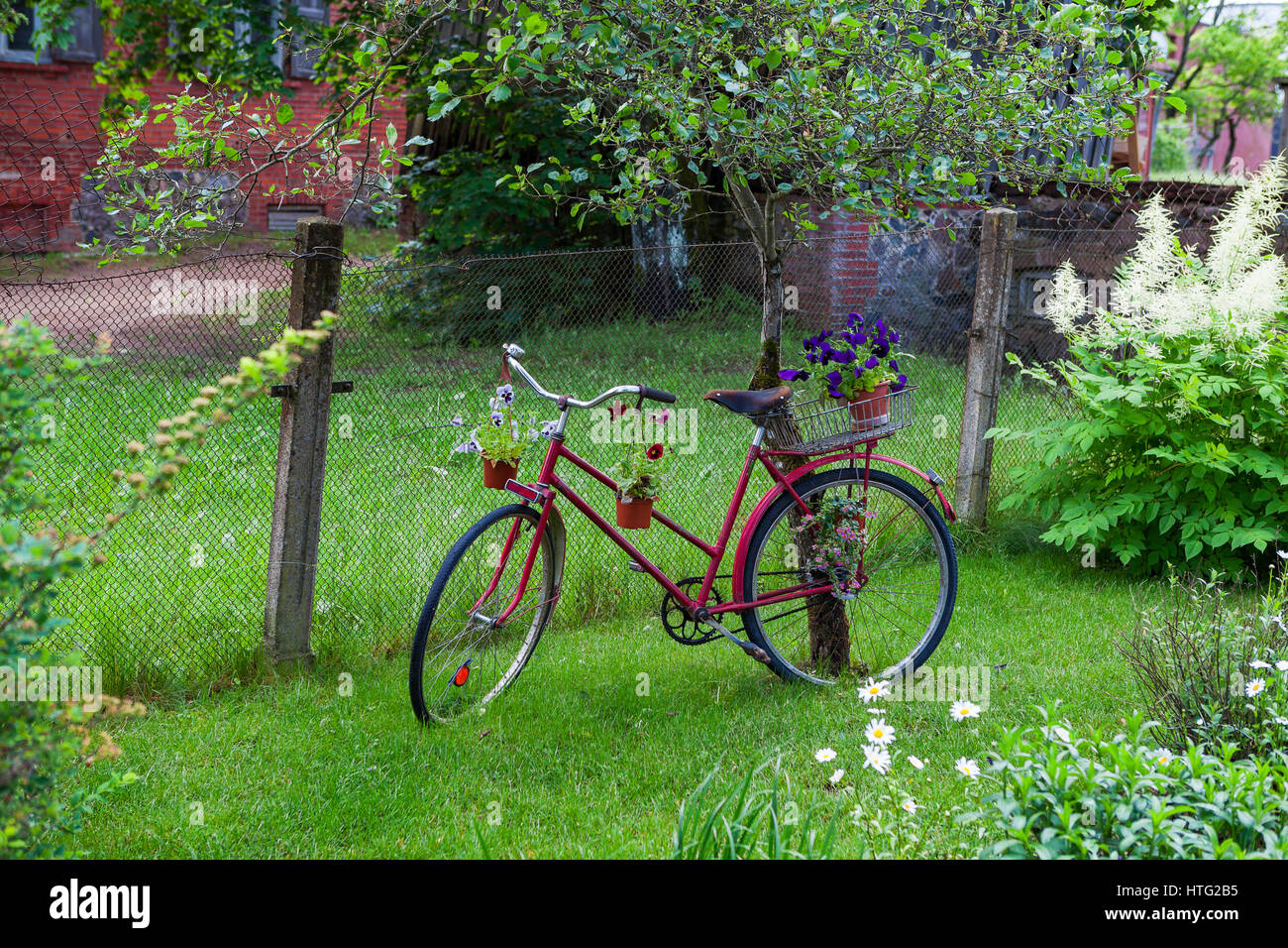 Vintage Bicycle With Flowers In The Green Garden