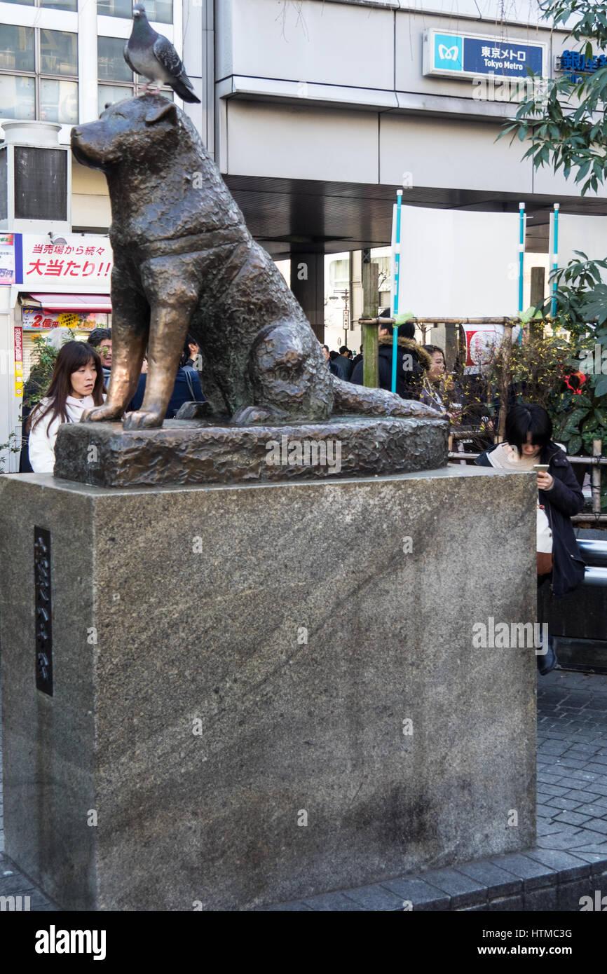 bronze-hachiko-memorial-statue-at-hachiko-square-shibuya-train-station-HTMC3G.jpg