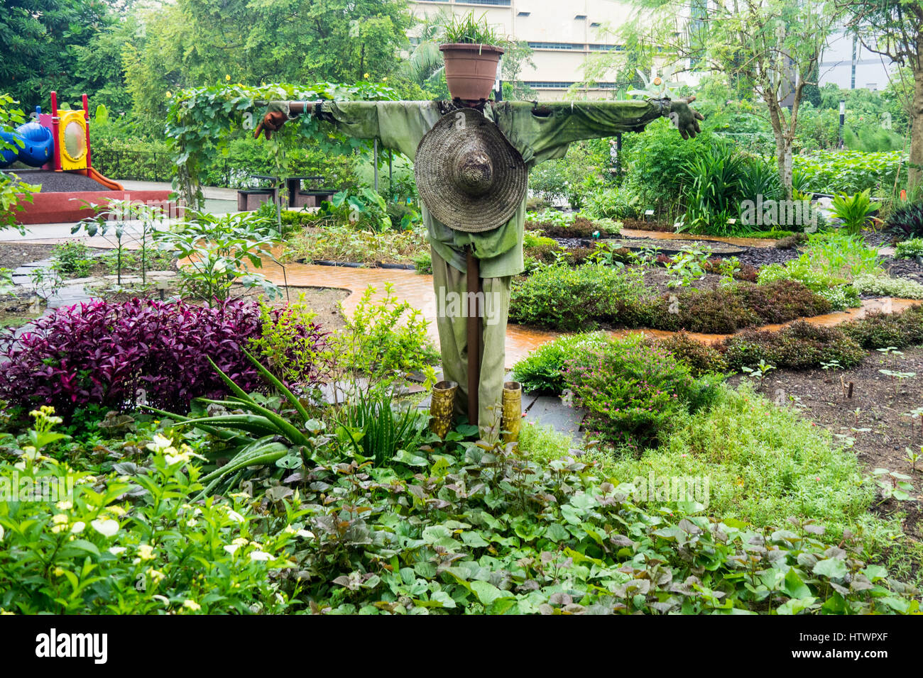 a-scarecrow-in-the-middle-of-a-green-garden-in-hortpark-singapore-HTWPXF.jpg