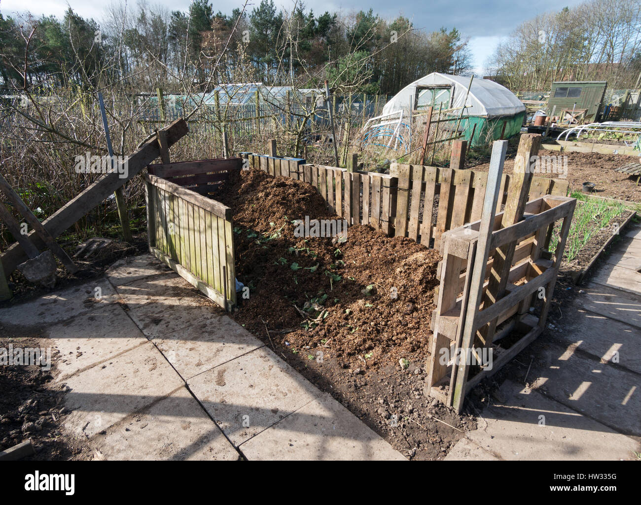 An allotment compost bin made from recycled pallets. Stock Photo
