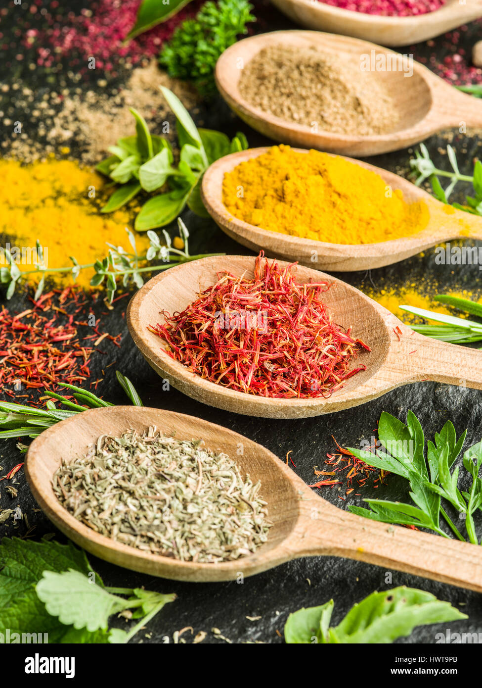 Assortment of colorful spices in the wooden spoons. - Stock Image