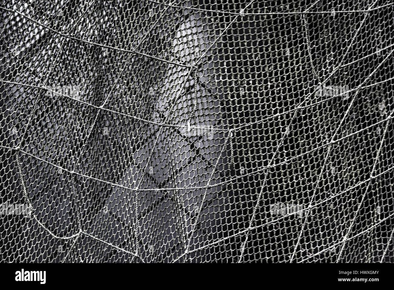 Fishing net texture - Stock Image