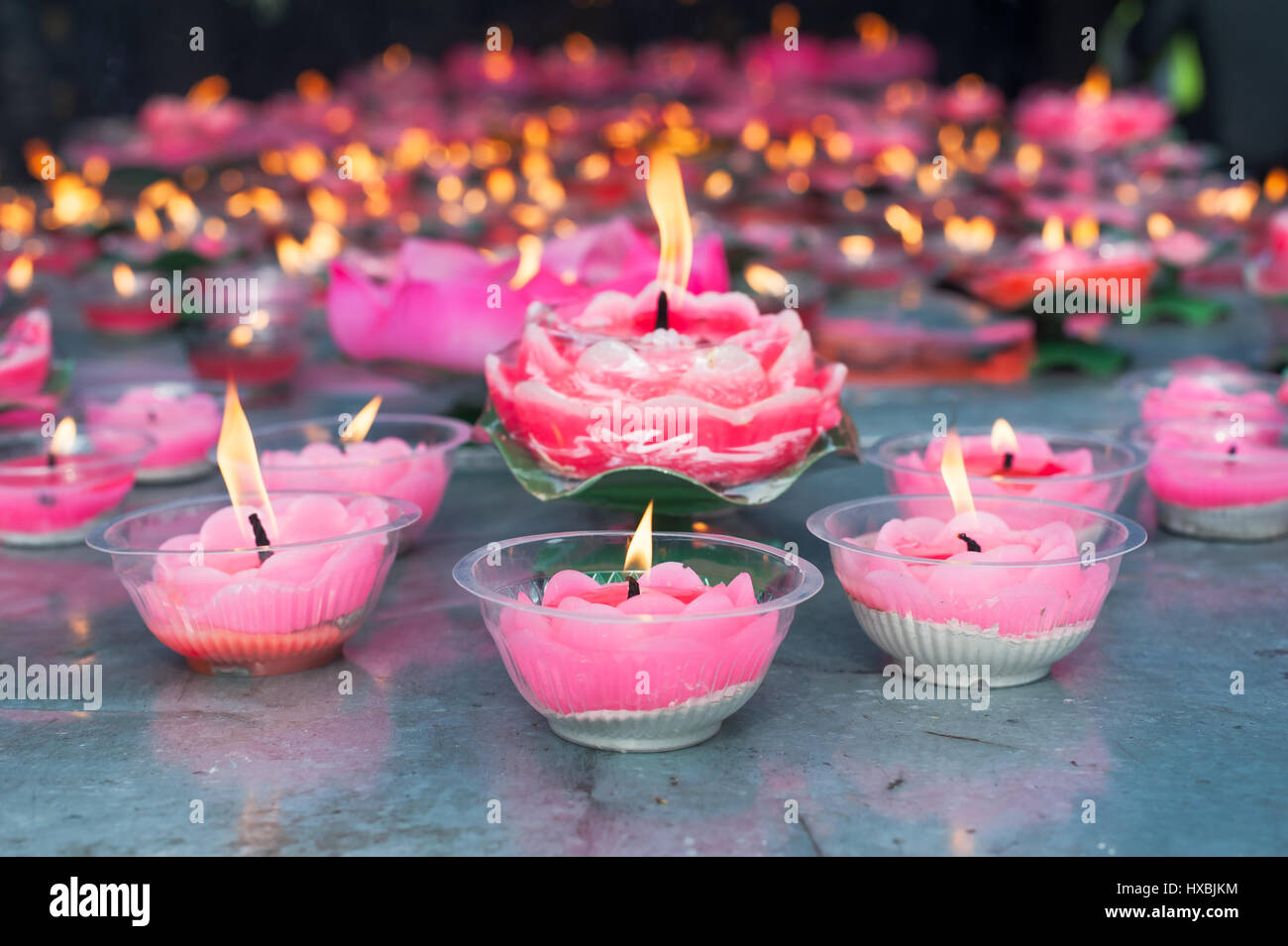 Lotus candles in a buddhist temple chengdu china stock photo lotus candles in a buddhist temple chengdu china izmirmasajfo