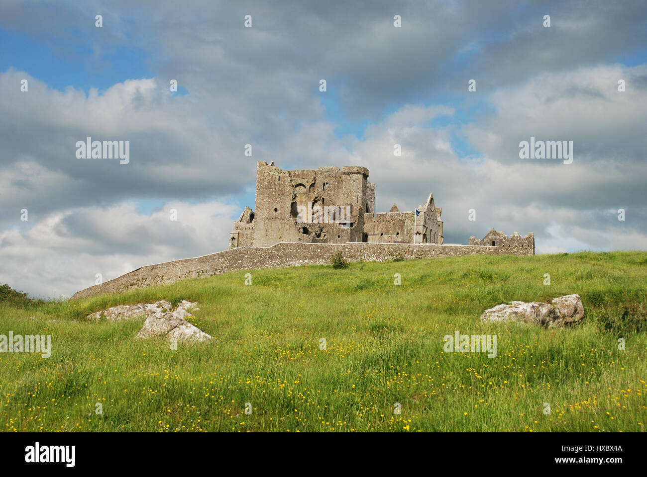 Rock of Cashel in the distance with dandelion filled grass in the foreground and fluffy clouds against a blue sky. - Stock Image