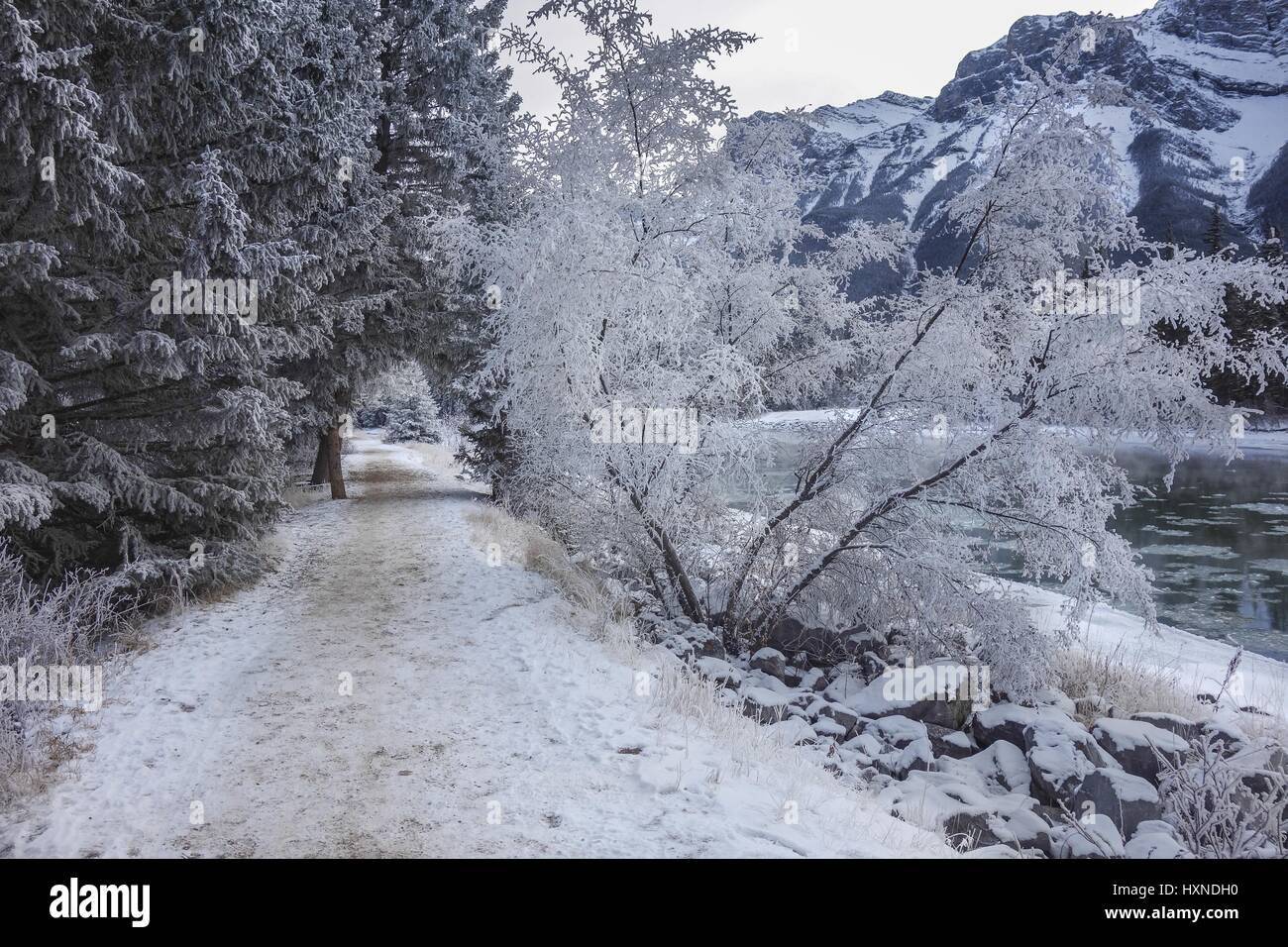 bow-river-walking-path-during-winter-in-