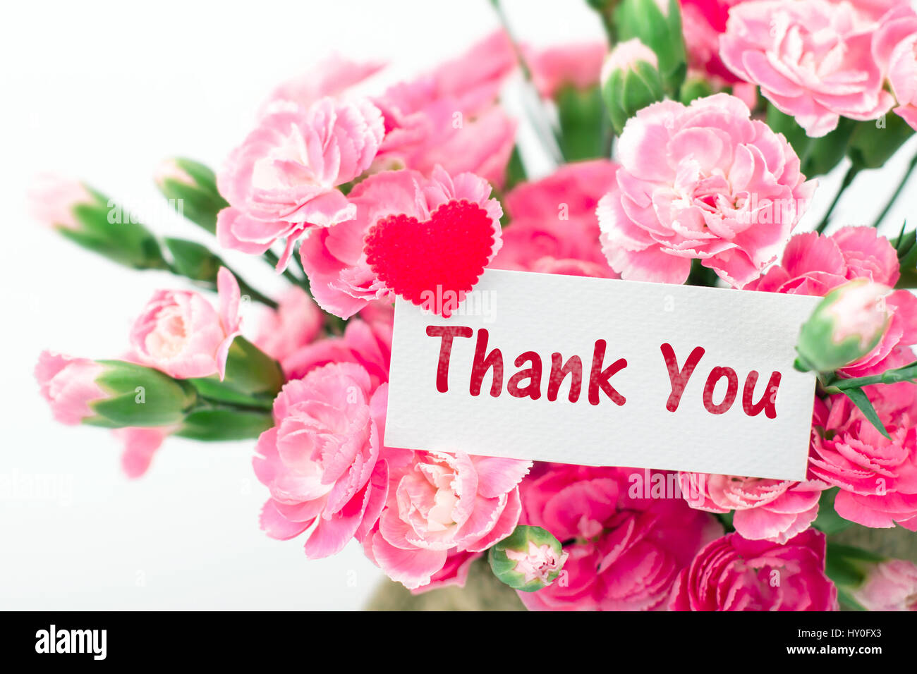 Thank you card and beautiful blooming of the pink
