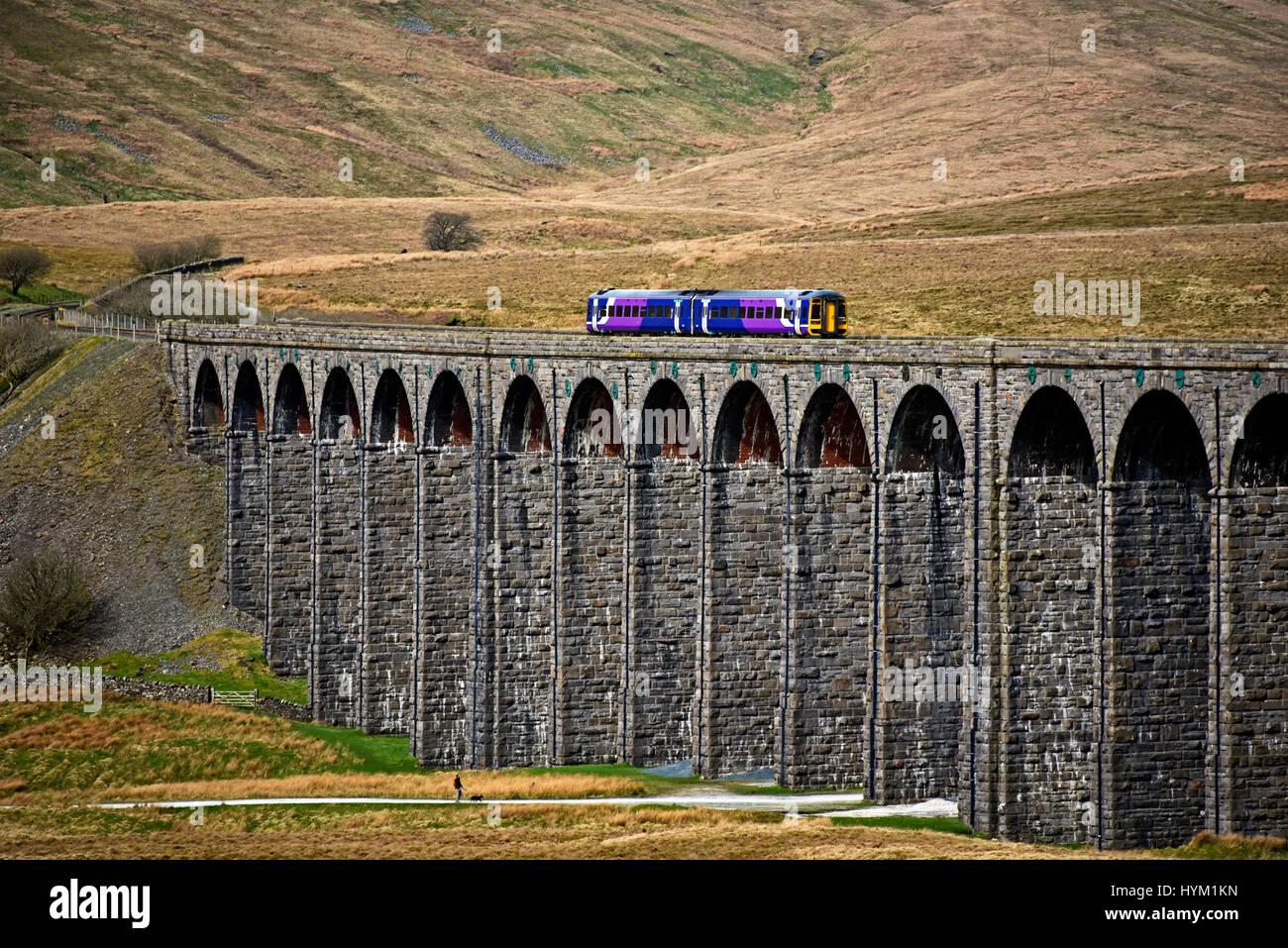 passenger-train-crossing-the-ribblehead-viaduct-on-the-settle-to-carlisle-HYM1KN.jpg